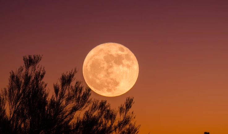 Getaway moon